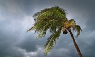 Hurricanes Cause an Increased Rate of Home Repair and Maintenance